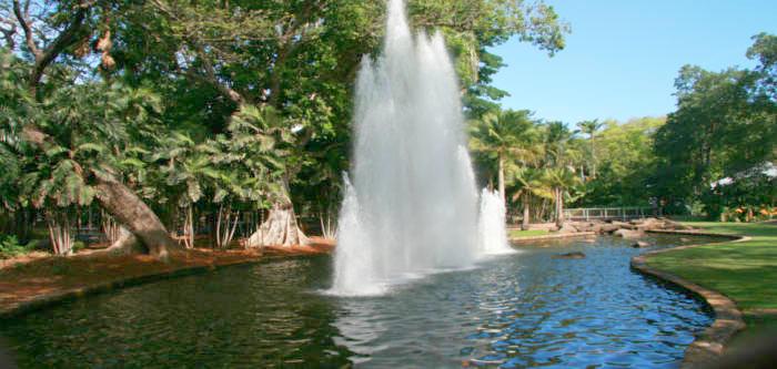 Free Things To Do  The George Brown Darwin Botanic Gardens