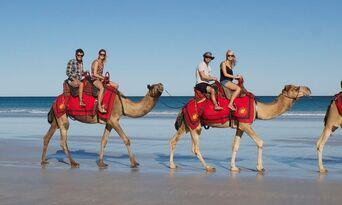 Cable Beach Morning Camel Ride Thumbnail 5