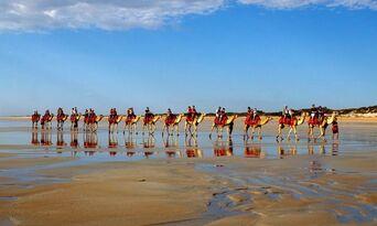 Cable Beach Pre Sunset Sampler Camel Ride Thumbnail 3