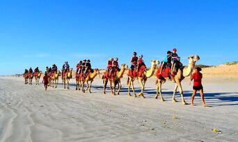 Cable Beach Pre Sunset Sampler Camel Ride Thumbnail 5