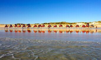 Cable Beach Pre Sunset Sampler Camel Ride Thumbnail 1