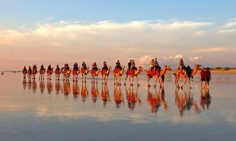 Sunset Cable Beach Camel Ride Thumbnail 2