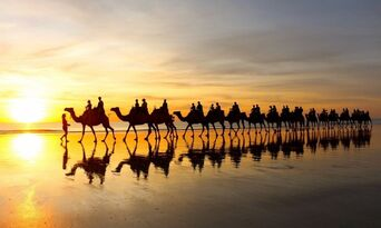 Sunset Cable Beach Camel Ride Thumbnail 3