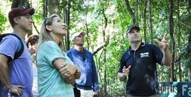 Rainforest and Wildlife Tamborine Lamington Full Day Tour