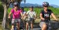 Half Day Guided Biking Wine Tour Thumbnail 1