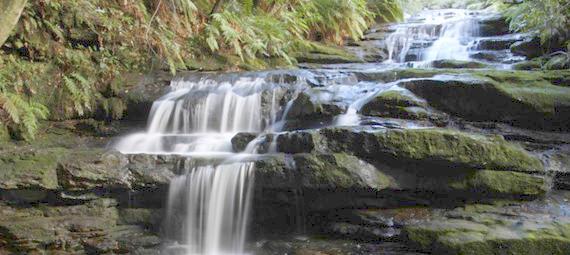 Free Things To Do  Leura Cascades Picnic Area