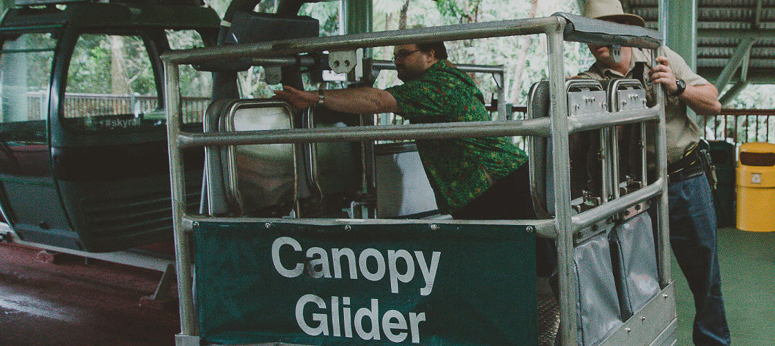 Skyrail Rainforest Cableway Alicia Smith Review Cairns