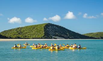 Rainbow Beach Dolphin Kayak & 4WD Beach Drive Adventure Thumbnail 3
