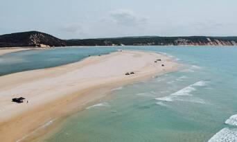 Noosa Dolphin Viewing Sea Kayak Tour Thumbnail 2