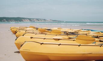Noosa Dolphin Viewing Sea Kayak Tour Thumbnail 3