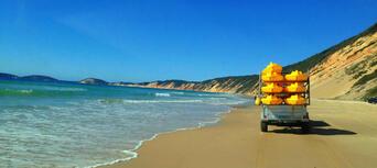 Rainbow Beach Dolphin Kayak and 4WD Beach Drive Adventure Thumbnail 3