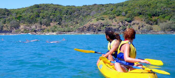 Rainbow Beach Dolphin Kayak and 4WD Beach Drive Adventure Thumbnail 4