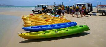 Rainbow Beach Dolphin Kayak and 4WD Beach Drive Adventure Thumbnail 5