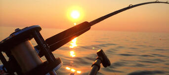 Sydney Deep Sea Fishing Charter Thumbnail 2
