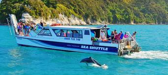 Abel Tasman National Park Full Scenic Cruise Thumbnail 1