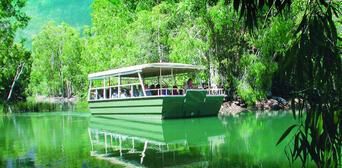 Hartleys Crocodile Adventures Breakfast with Koalas Thumbnail 6