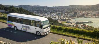 Wellington City Sights and Coastline Tour Thumbnail 3