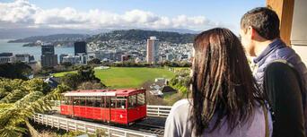Wellington City Sights and Coastline Tour Thumbnail 2