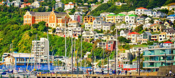 Wellington City Sights and Coastline Tour Thumbnail 5