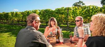 Martinborough Gourmet Wine Tour from Wellington Thumbnail 2