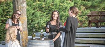 Martinborough Gourmet Wine Tour from Wellington Thumbnail 5