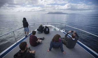 Maria Island National Park Tour from Hobart Thumbnail 6