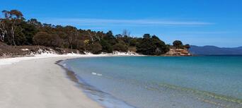 Maria Island National Park Tour from Hobart Thumbnail 4