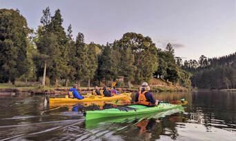 Evening Glow Worm Kayak Tour from Tauranga including Wine Tasting Thumbnail 2