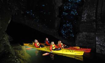 Evening Glow Worm Kayak Tour from Tauranga including Wine Tasting Thumbnail 1