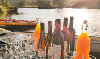 Evening Glow Worm Kayak Tour from Tauranga including Wine Tasting Thumbnail 6