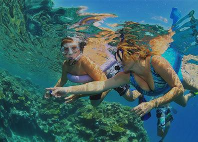Reef Tours in Cairns, Port Douglas & Barrier Reef